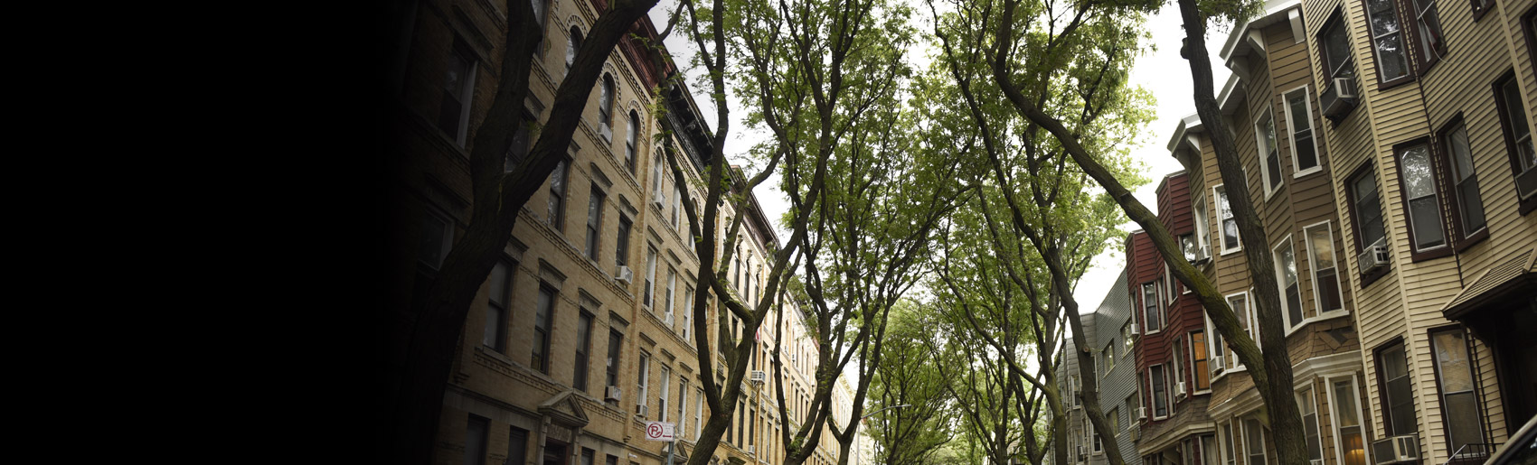 A tree-lined street of brownstone homes