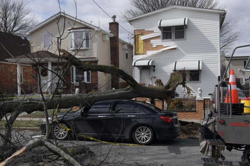 Damage from Riley-Quinn storms: a large tree limb has fallen on a car.