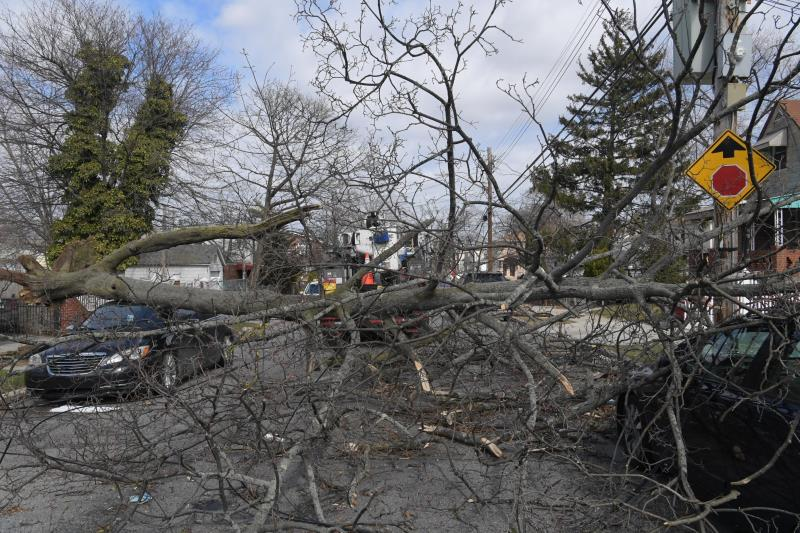 Tree limbs in a residential street are part of damage from the Riley-Quinn storm events.