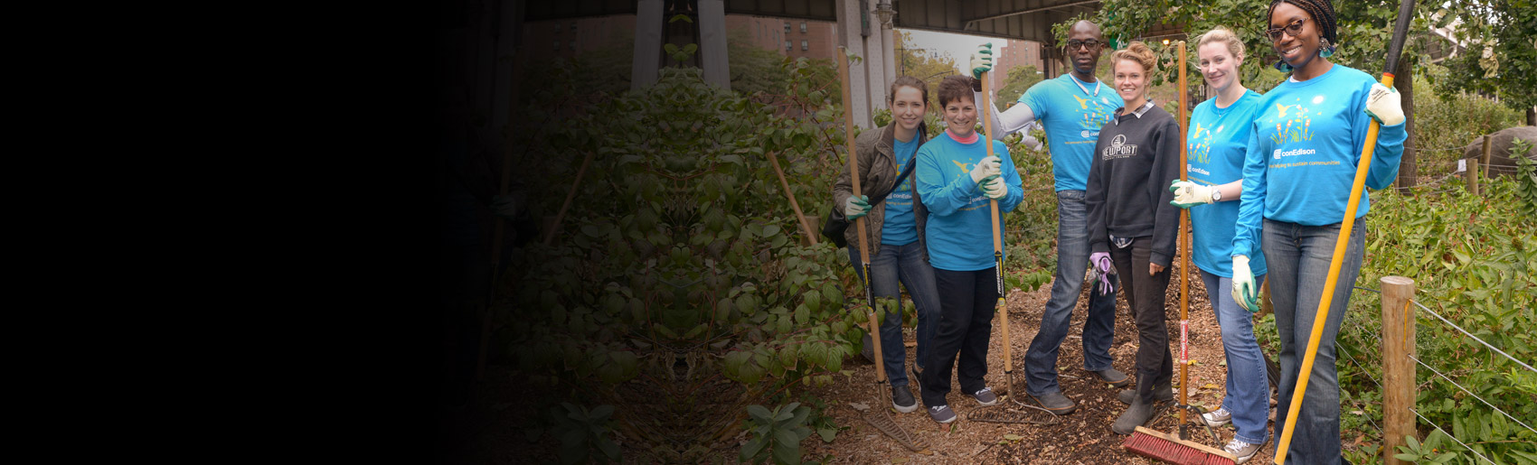 A group of Con Edison employees, working together in a community garden.
